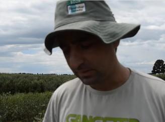 Técnico Agrícola STR de Vacaria e Muitos Capões