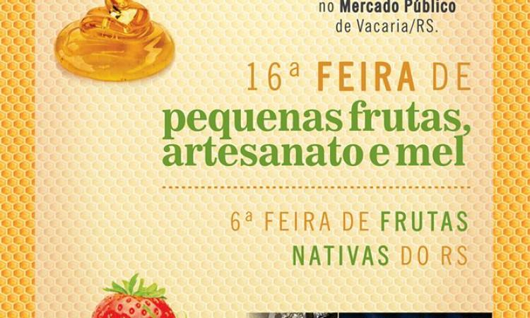Inicia a Feira de Pequenas Frutas, Artesanato e Mel e Feira de Frutas Nativas do RS