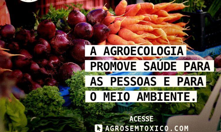 Fórum Gaúcho de Combate aos Impactos dos Agrotóxicos lança campanha Agro sem Tóxico